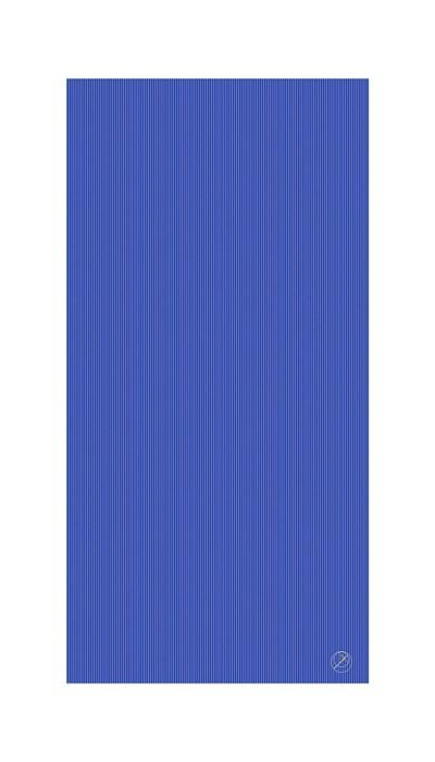 Podložka na cvičení REHA, 200 x 100 x 2,5 cm, modrá