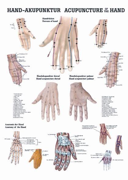 Akupunkturní zóny na rukou, 50 x 70 cm