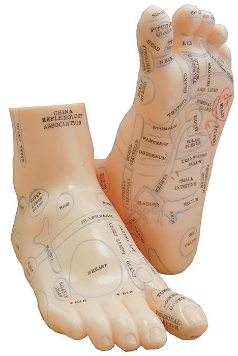 Model nohy pro reflexní masáže chodidel, 20 cm, pár
