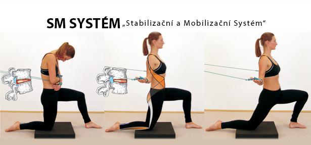SM Systém jako Stabilizační a Mobilizační Systém